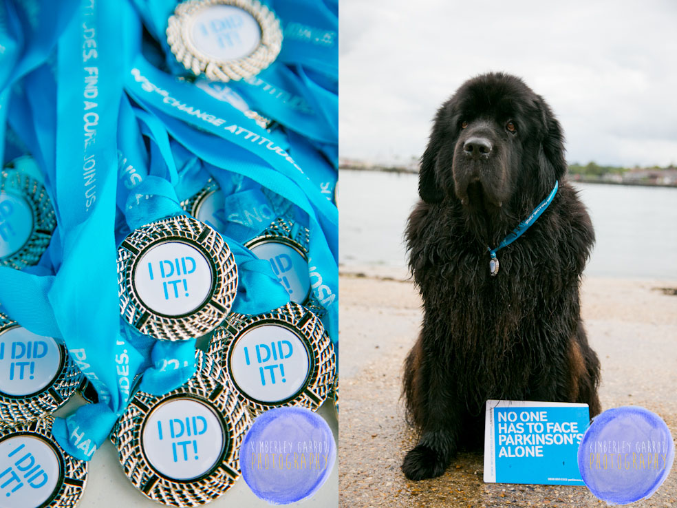 Newfoundland Dogs working with Parkinson's UK photographed by Kimberley Garrod